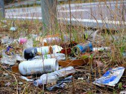 Plus de gourdes réutilisable = moins de déchets dans la nature
