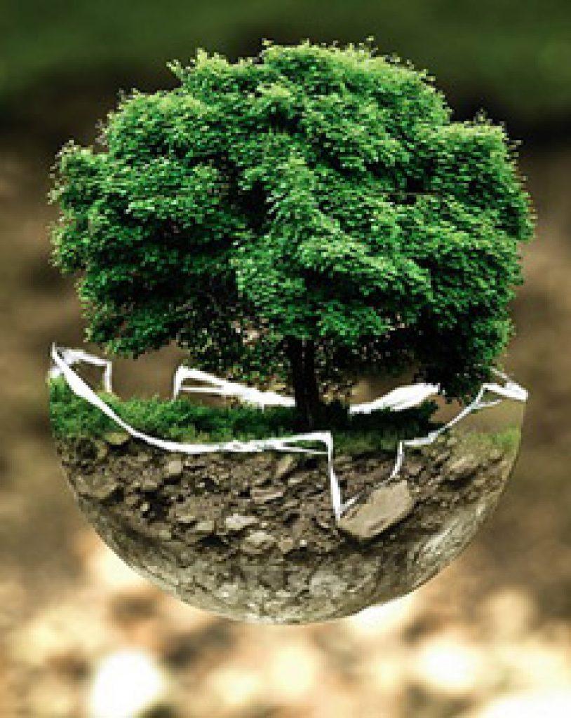 Klean Kanteen : Un acteur engagé dans l'écologie, la protection de l'environnement et des population